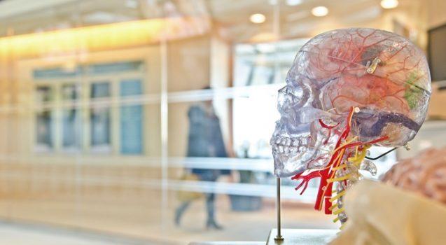 rehabilitación neurológica