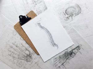 huesos espalda