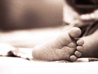 Influencia de la nutrición en los 1000 primeros días de vida